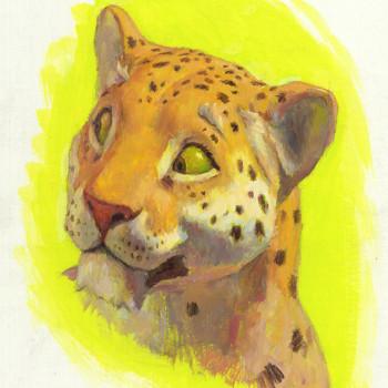 Papa Leopard