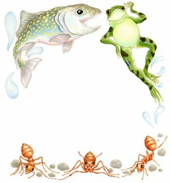 Ants Fish & Frog