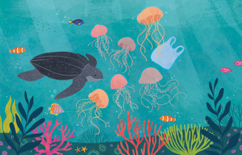 Turtle and jelly fish