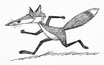 Fox running.