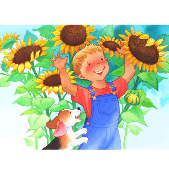 Sunflower Boy