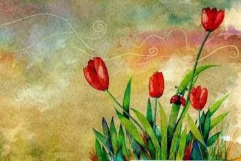 Tulips- Tulipanes