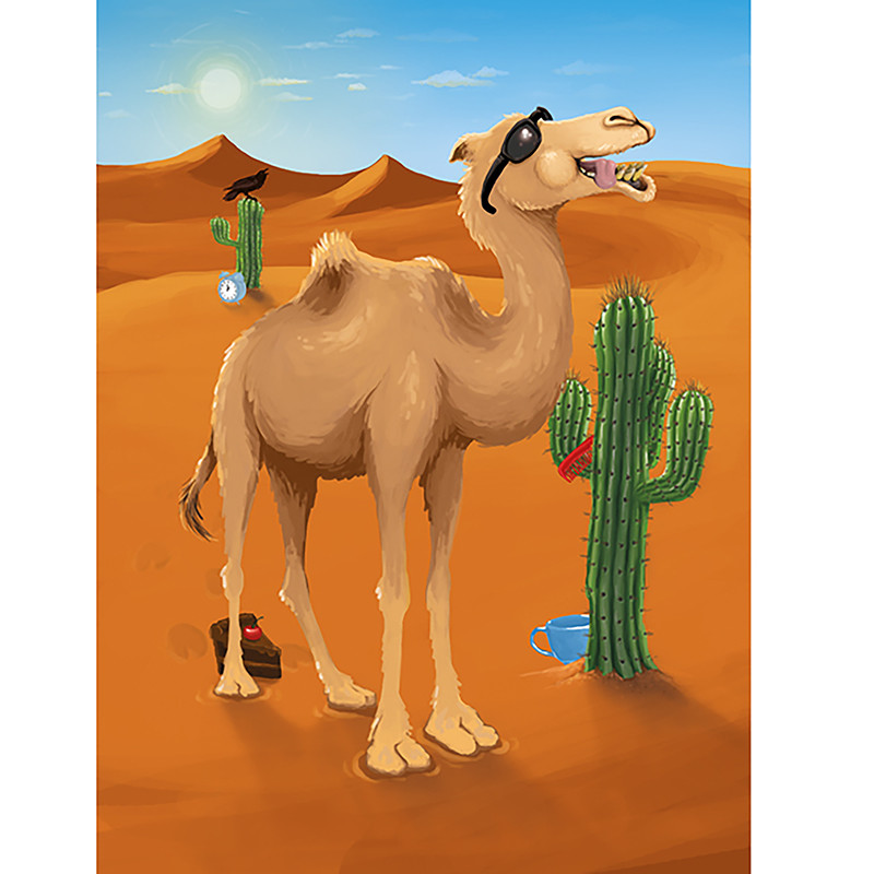 A Cool Camel