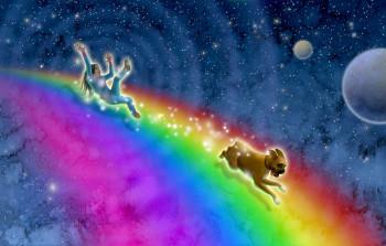 Night Rainbow, Starlight Shining