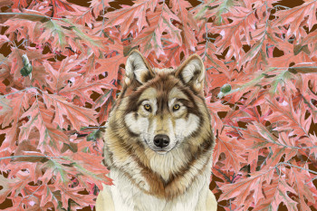 Wolf with leaves
