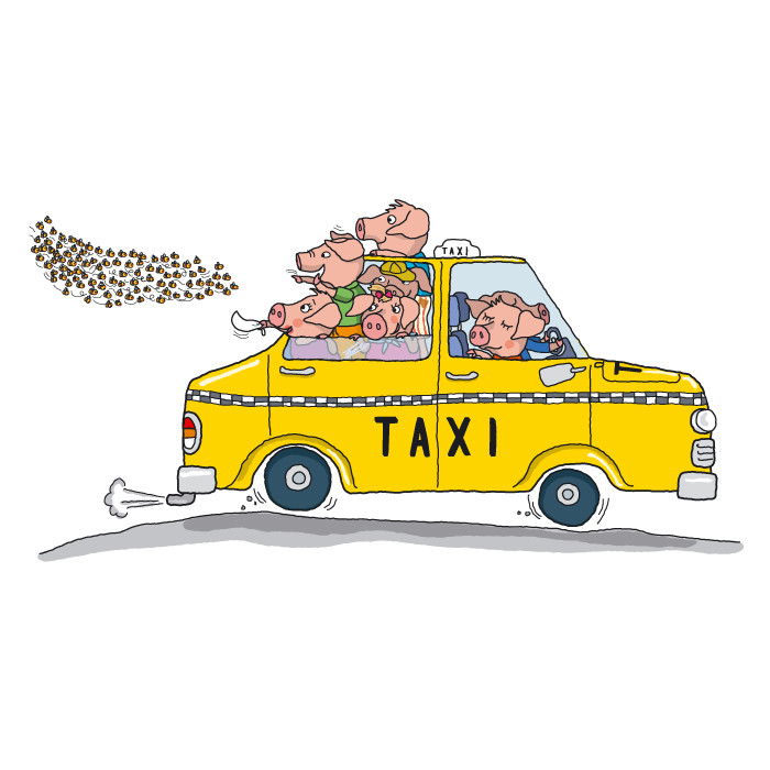 Pigs In a Taxi