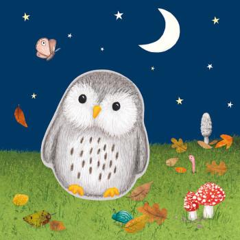 Little Owl jigsaw book