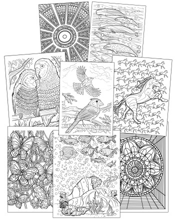 Grown-up Coloring Books