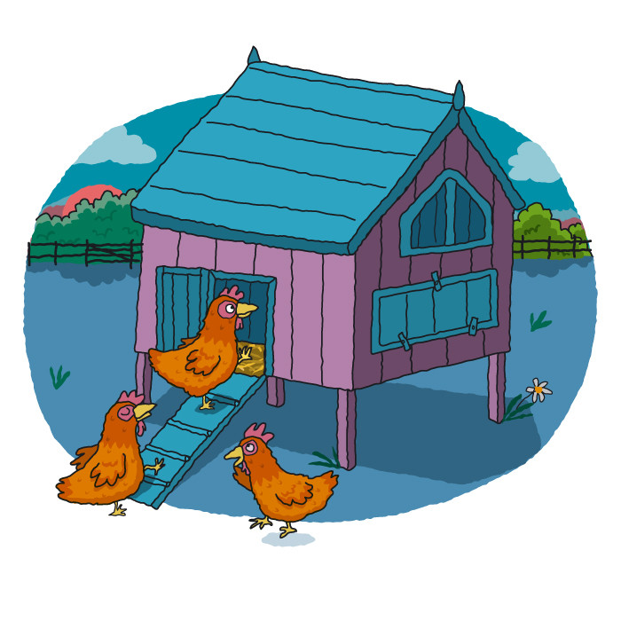 Chickens Going to Roost