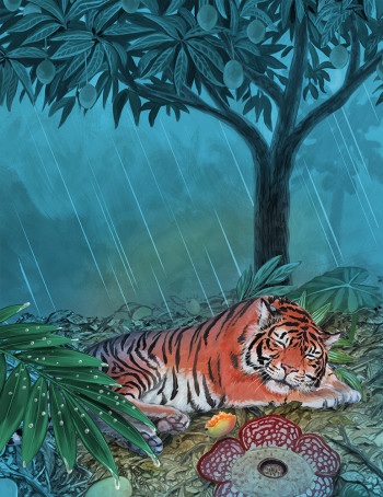 Tiger Under a Mango Tree