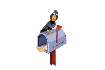 Crow on Mailbox