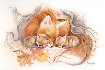 Fox Den Snug