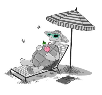 Turtle goes on holiday