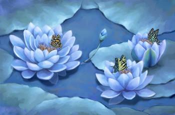 Lotus, interior illustration