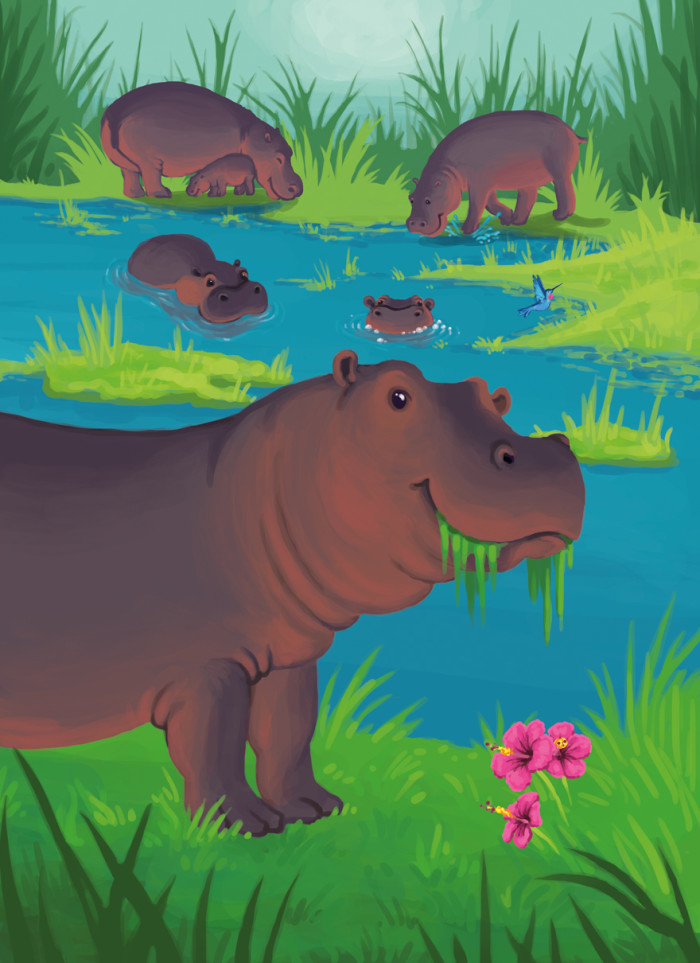 Hippos in nature