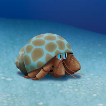 Hermit Crab 2