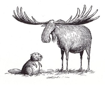 Moose and beaver