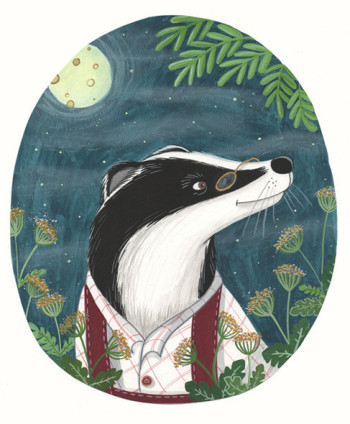 Badger at night