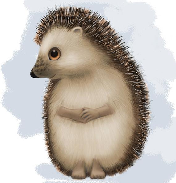 Shy Hedgehog