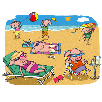 Six Big Pigs Sunbathing
