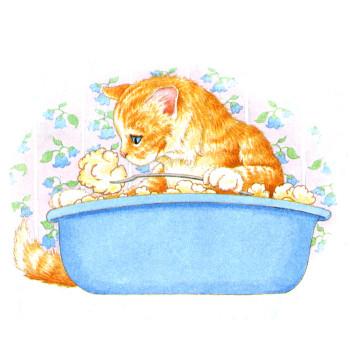 Kitten Eating Dumplings