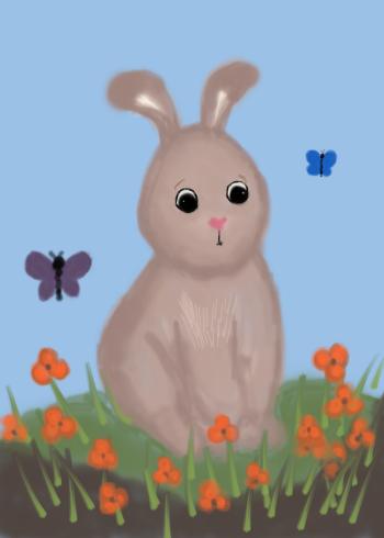 cocoa the bunny