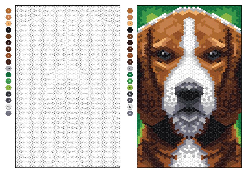 dog hexagons