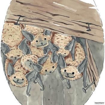 Percy the Bat