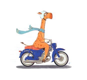 Giraffe on the go!