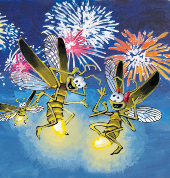 Cover: Firefly Fourth of July