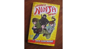 Secret Ninja Spies