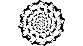 Spiraling silhouettes