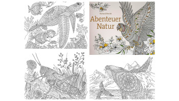 The Labyrinth: Mythical Beasts to Colour and Abenteuer Natur
