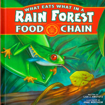 What Eats what in a Rain Forest Food Chains