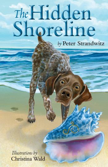 The Hidden Shoreline