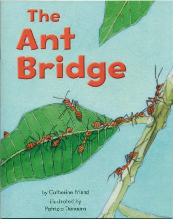 The Ant Bridge