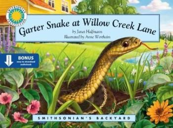 Garter Snake at Willow Creek Lane