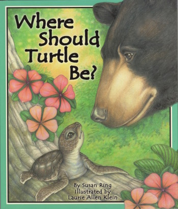 Where Should Turtle Be?