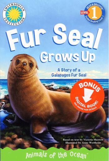 Fur Seal Grows Up