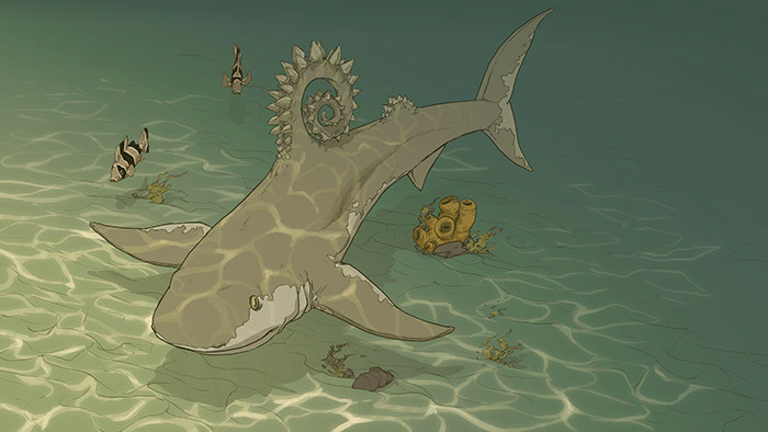 Helicoprion Concept 3