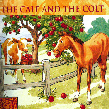 Calf and the horse
