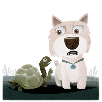 The Turtle and the Terrier