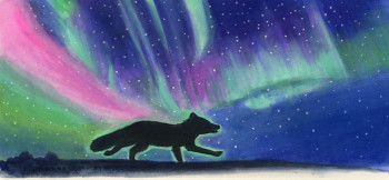 Arctic fox and the Northern Lights