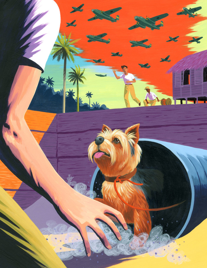 The Book of Animal Superheroes - Smoky the Yorkshire Terrier