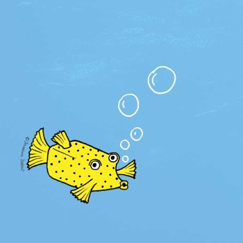 Box Fish Illustration for Children's Non Fiction