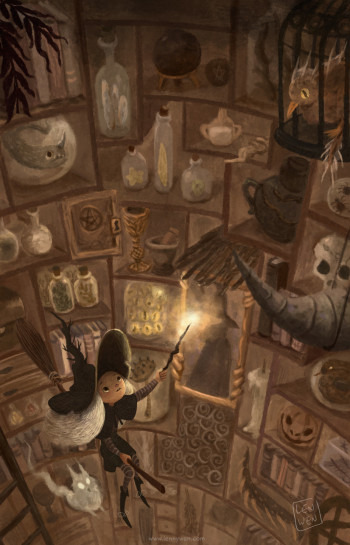 The Secret Library