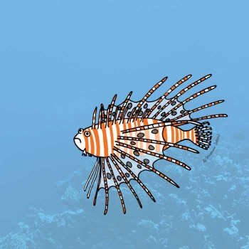 Lion Fish for Children's Non Fiction