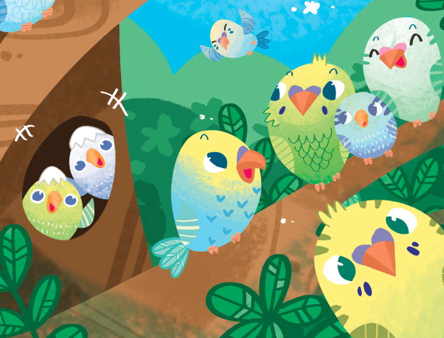 A Flock of Budgie
