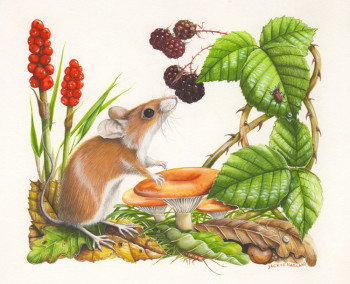 Woodmouse - promotional piece