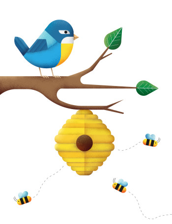 Bird and bees